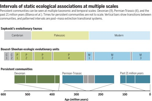 Ecological stasis on geological time scales