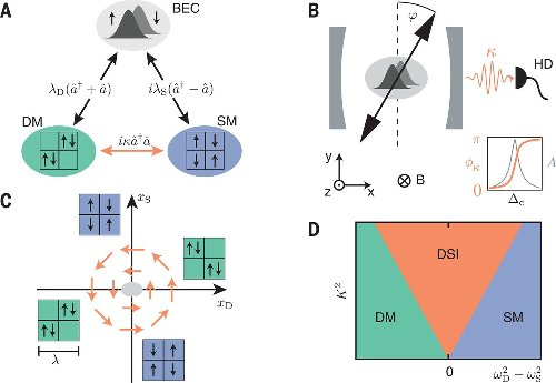 Dissipation-induced structural instability and chiral dynamics in a quantum gas