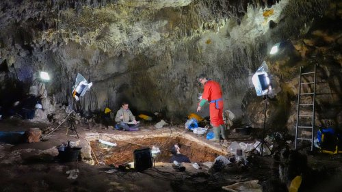 DNA from cave dirt tells tale of how some Neanderthals disappeared