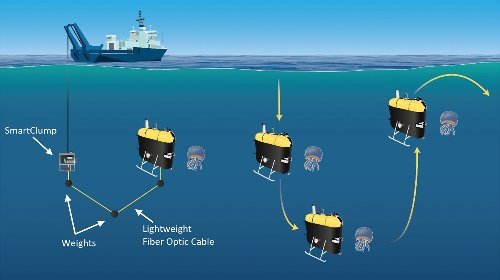 Stealthy tracking of deep ocean organisms with Mesobot