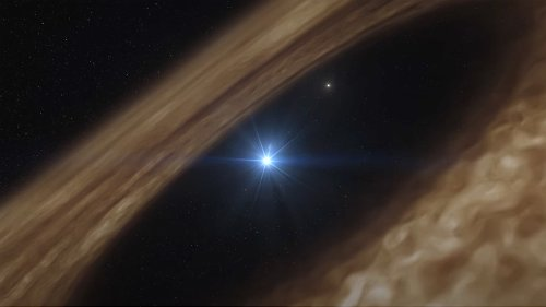 Planet-forming disks around stars may come preloaded with ingredients for life