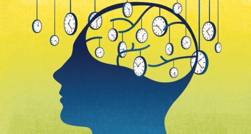 How the brain perceives time
