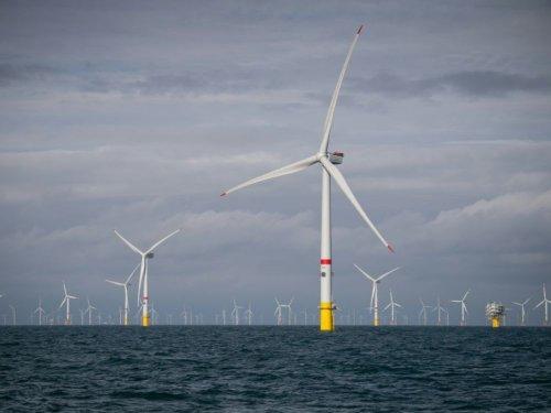 """Projet de parc éolien en mer du Nord: six partis """"exigent"""" un référendum local"""