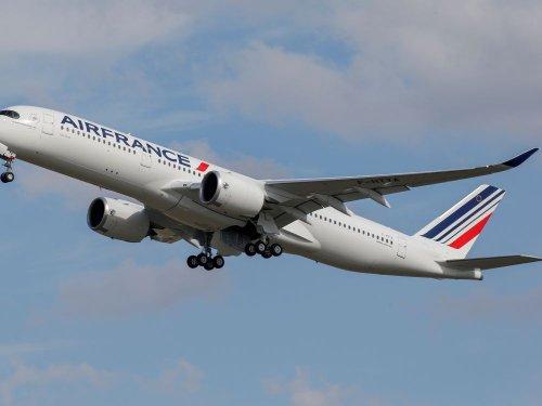 Air France réalise un premier vol long-courrier avec du biocarburant