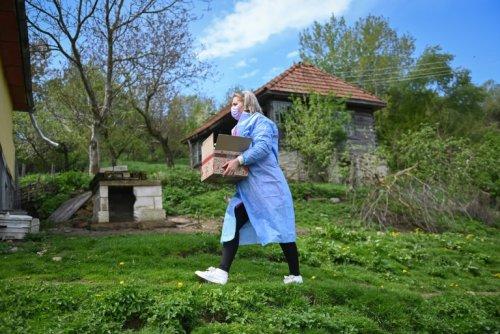 En Roumanie, du porte-à-porte pour vacciner des villageois isolés