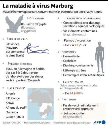 Guinée: fin du premier épisode du virus de Marburg en Afrique de l'Ouest