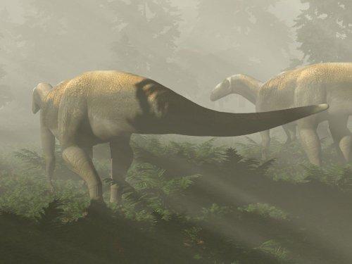 Le raptor était en fait une paisible herbivore - Sciences et Avenir