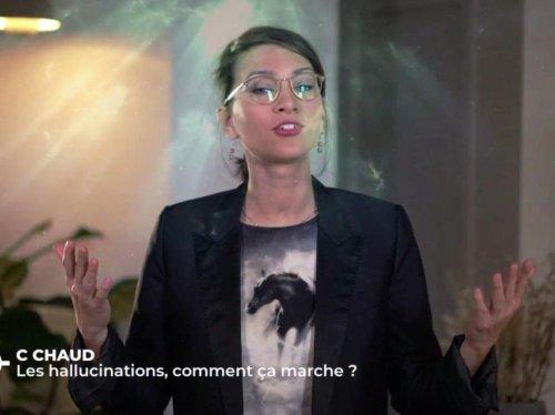 VIDEO. La chronique de Camille : mensonge ou maladie, d'où venaient les hallucinations de Jeanne d'Arc ?
