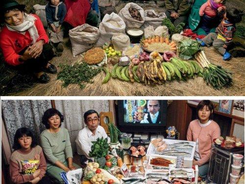 Comment nourrir 10 milliards d'humains ?