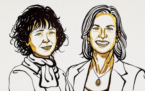 Nobel Prize in Chemistry Goes to Discovery of 'Genetic Scissors' Called CRISPR/Cas9