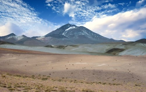 The World's Highest-Dwelling Mammal Lives atop a Volcano - Scientific American