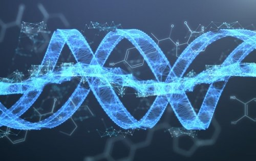 A Vision for the Next Decade of Human Genomics Research