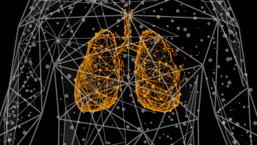 Vape Aerosol Has Minimal Impact on Gene Expression in Human Lung Tissue Compared to Cigarette Smoke