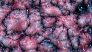Experiments on Live Human Brain Tissue Yield Unexpected Findings