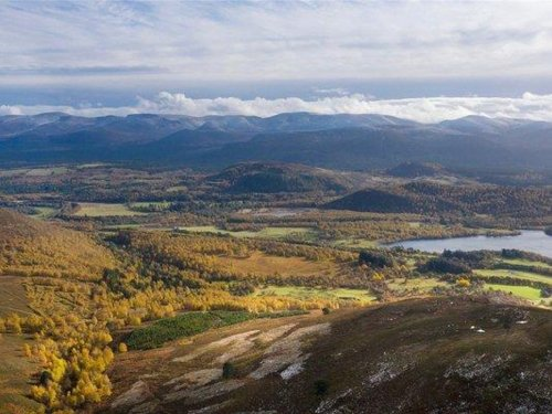BrewDog steps up reforestation drive with purchase of Cairngorms estate