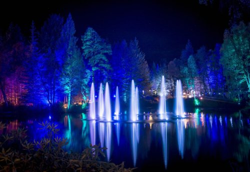 Enchanted Forest: Scotland's biggest light show is called off amid uncertainty over social distancing guidelines
