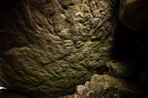 Prehistoric animal carvings discovered for first time in Scotland