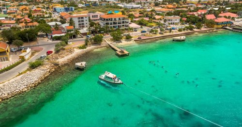 My Escape from Reality—Diving the Shores of Bonaire
