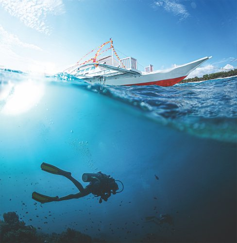 Access PADI's Reactivate Course for Free