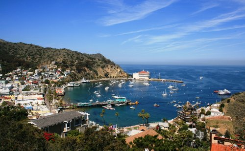 'Underwater Roombas' Sweeping for DDT Barrels Off Catalina Island