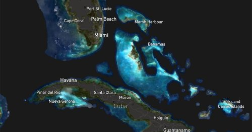 First Complete Map of World's Shallow Tropical Coral Reefs Published—And It Tracks Bleaching