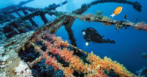 Seven Wrecks You Can Only Dive from a Liveaboard