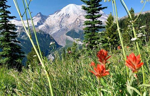 Discover Washington: Mount Rainier | Provided by Western Washington Toyota Dealers