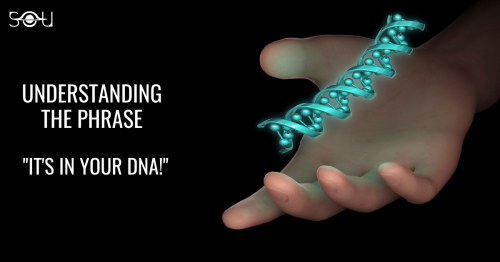 A Short Introduction To Genetics – Understanding Your Body Written In 46 Chromosomes.