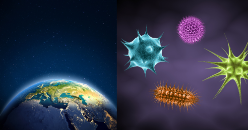 What Is The Panspermia Hypothesis And How Does It Explain The Beginning Of Life On Earth?