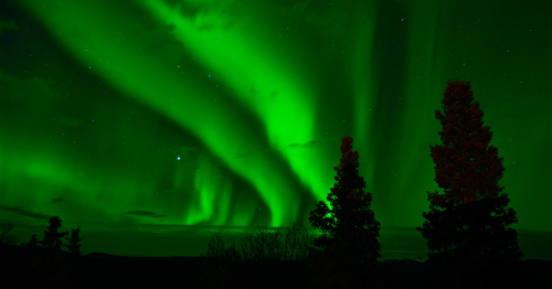 The Northern Lights Are A Natural Wonder. But What Exactly Creates These Spectacular Light Shows?