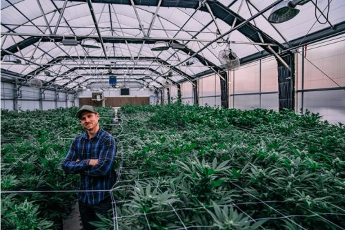 Power REIT Is The Best Cannabis Company To Invest In (NYSE:PW)