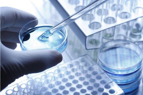 Monte Rosa Therapeutics Proposes Terms For $176 Million IPO (Pending:GLUE)