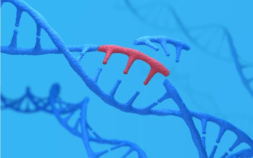 Intellia Therapeutics gets FDA greenlight for NTLA-5001 leukemia study