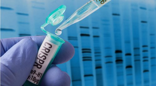 CRISPR's Q2 earnings beat thanks to $900M upfront payment from Vertex