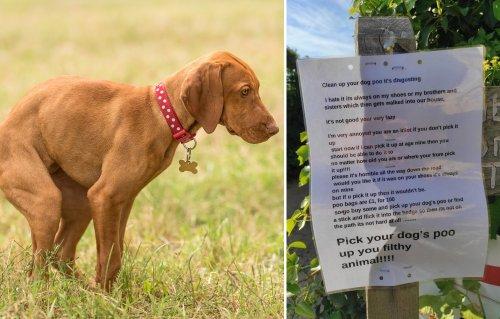 """""""제발 좀 치워!"""" 집앞 개 배설물에 분노한 9세 어린이의 경고문"""
