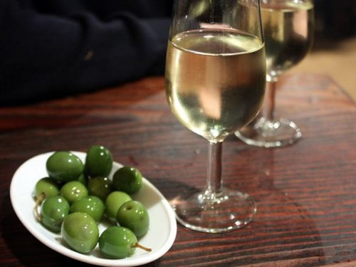 A Beginner's Guide to Spanish Wine