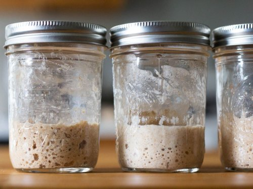 The Best Flour for Sourdough Starters: An Investigation