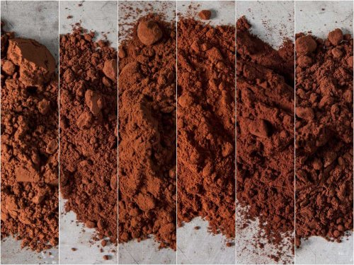 The Best Dutch Cocoa for Brownies, Hot Chocolate, and More
