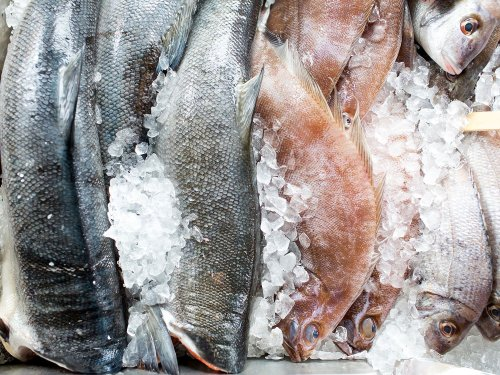 How to Store Fish in the Refrigerator