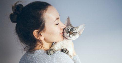¿Por qué los jóvenes prefieren tener una mascota a un bebé?