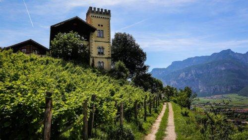 Alto Adige's Burgeoning Biodynamic Movement