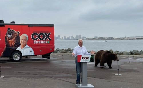 Gubernatorial Candidate John Cox's Campaign Funded Almost Entirely by John Cox