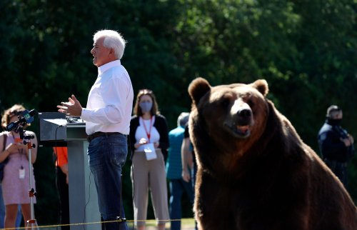 'Bear Guy' Recall Candidate John Cox Leads All Challengers — With a Whopping 9%