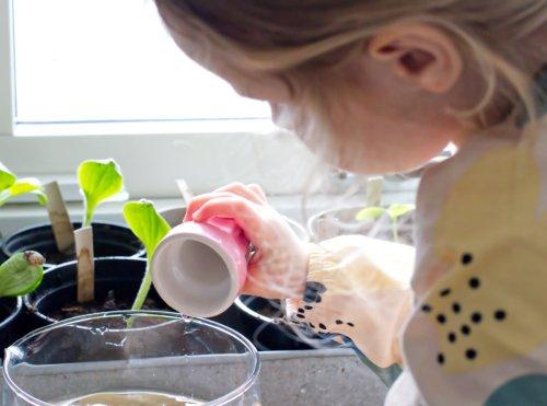 Mit Kindern Gärtnern - Tipps und einfache Gartenprojekte