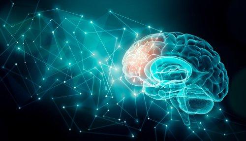 Nootropics for Brain Injury - Regenerate, Repair, and Remodel Your Brain