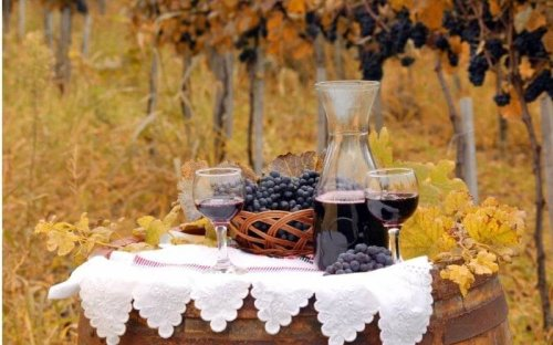Famous French Wine Regions: An Introductory Guide For Enthusiasts