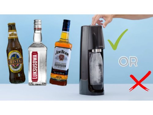 Can You Put Alcohol In SodaStream? Which Drinks Made The Cut