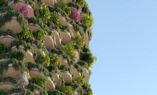The Boom In Blooming Buildings