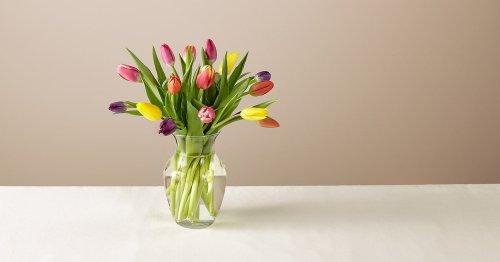 15 Stem Spring Breeze Multicolored Tulip Bouquet With Vase