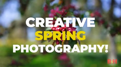 Capture the Splendor of Spring with These Creative Photo Ideas (VIDEO)
